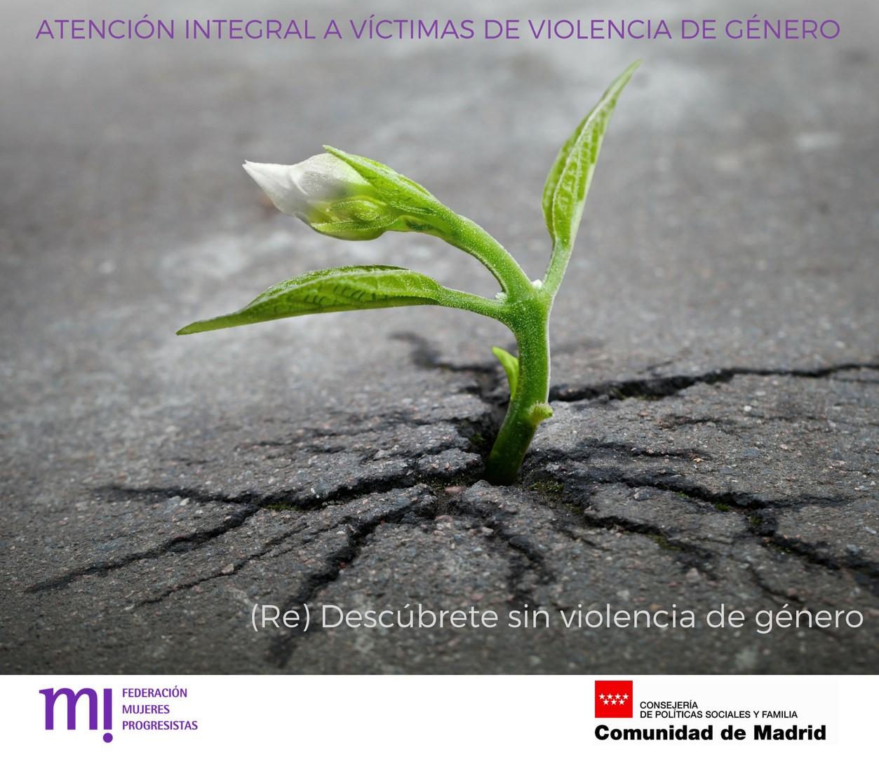 Course Image Chat de consulta abierta sobre Violencia de género